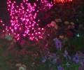 Гостевой дом «Прохлада»